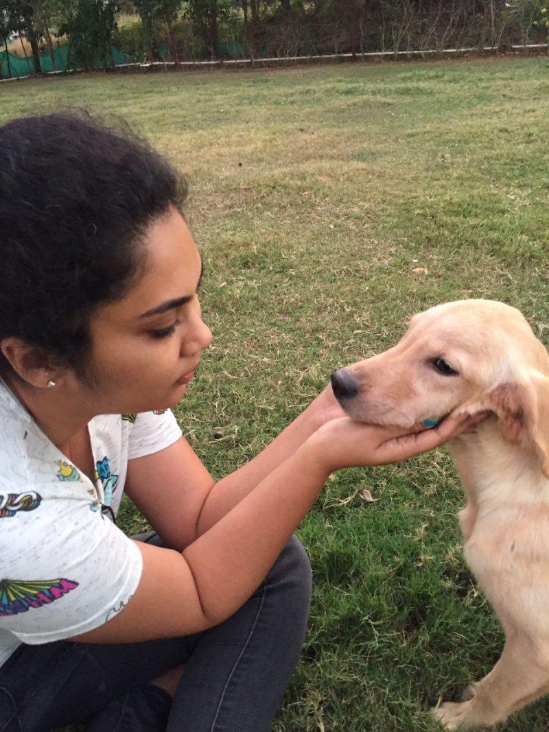 Phoebe's Farm – A Human Friendly Pet Resort