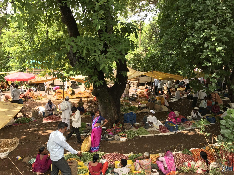 bhandardara market