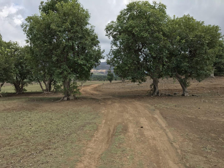 off road bhandardara