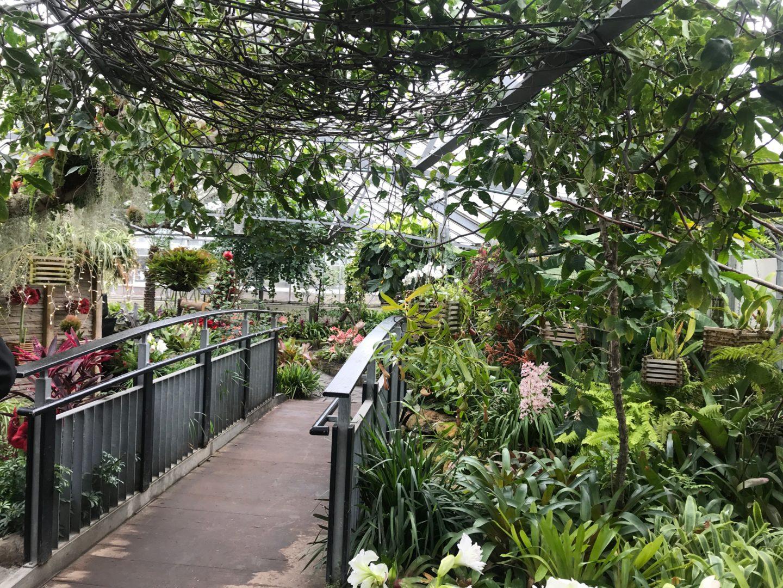 edward gardens toronto
