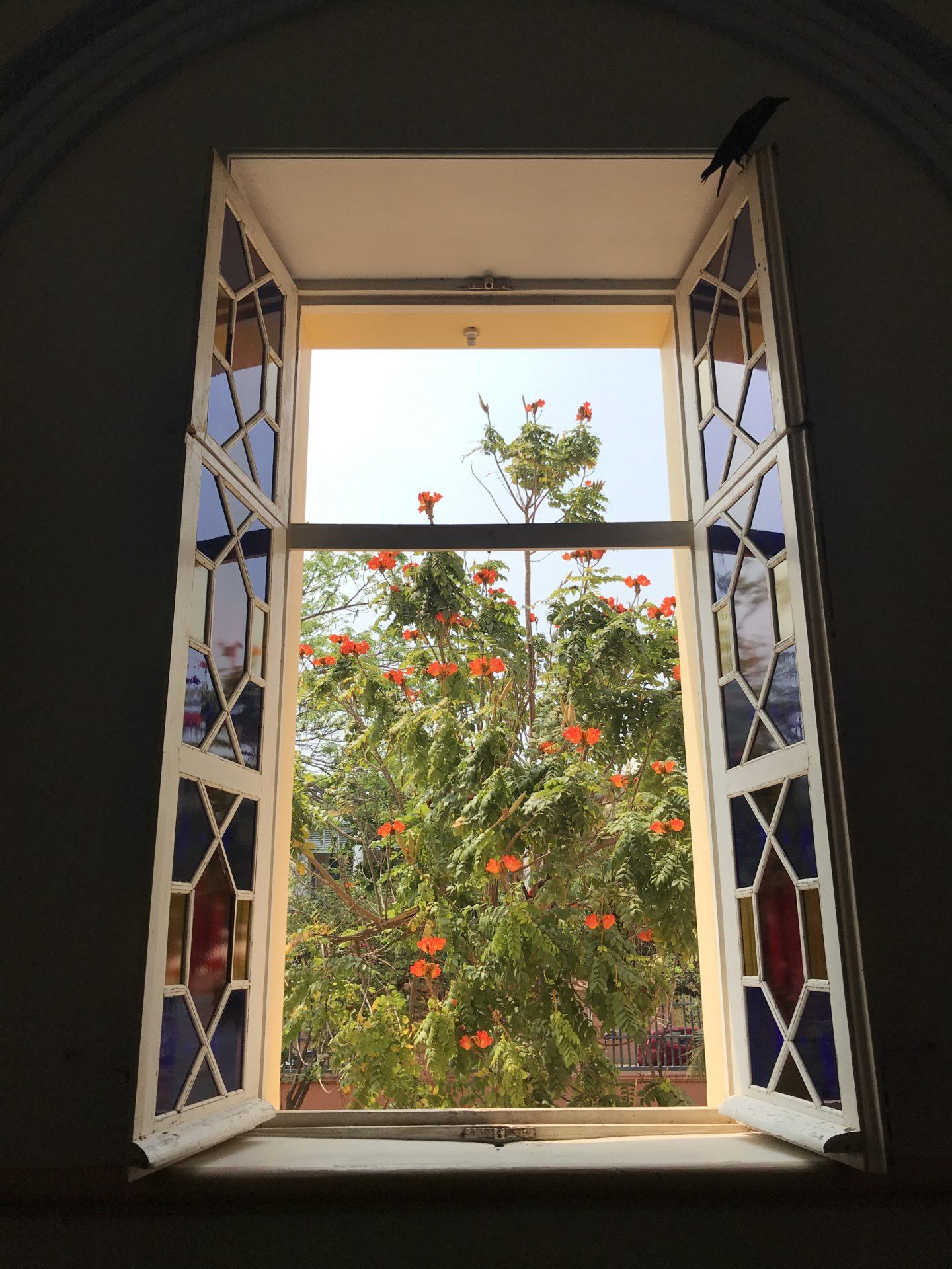 domus dei window