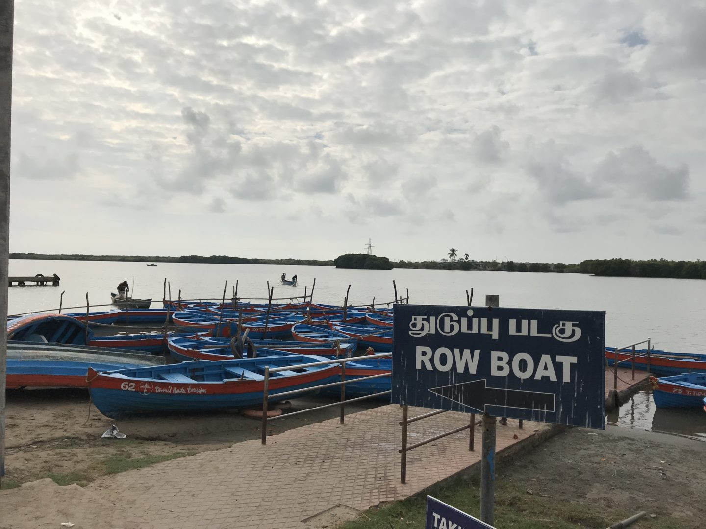 pichavaram row boats