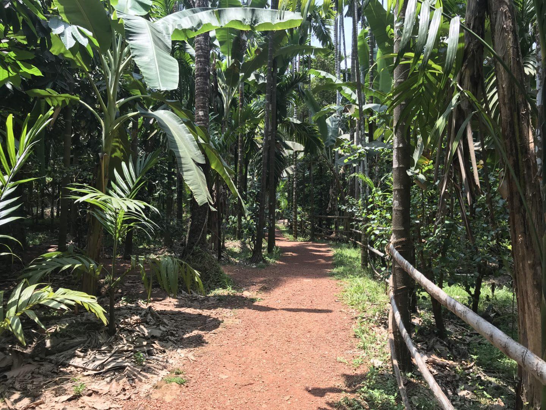 sahakari farm in goa