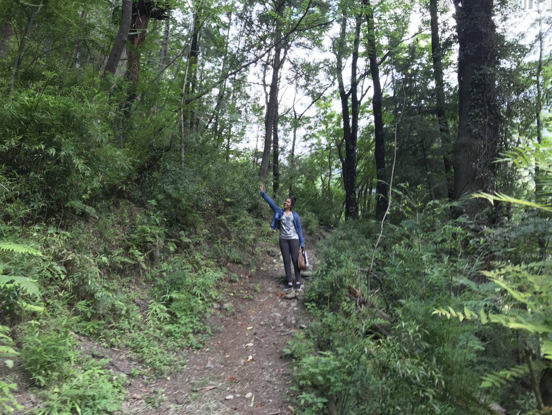 trek himachal
