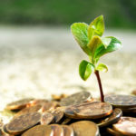 money-investments