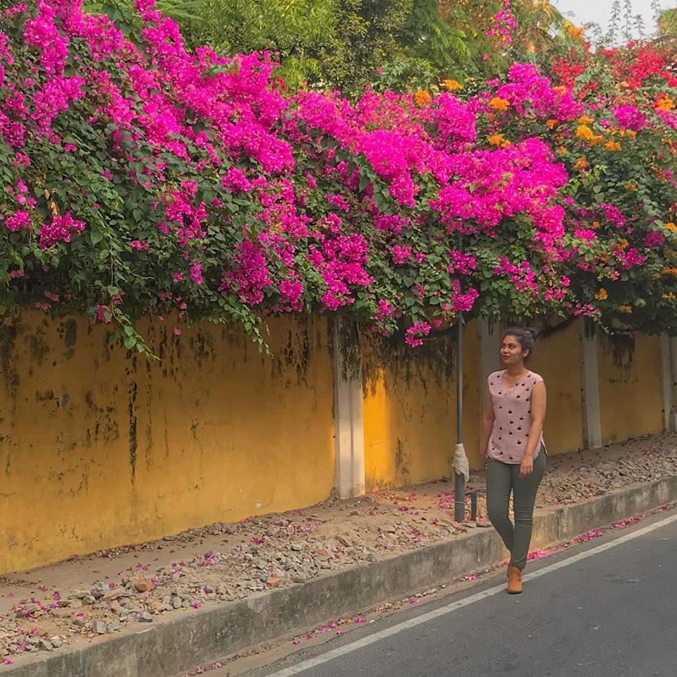 thatgoangirl in pondicherry