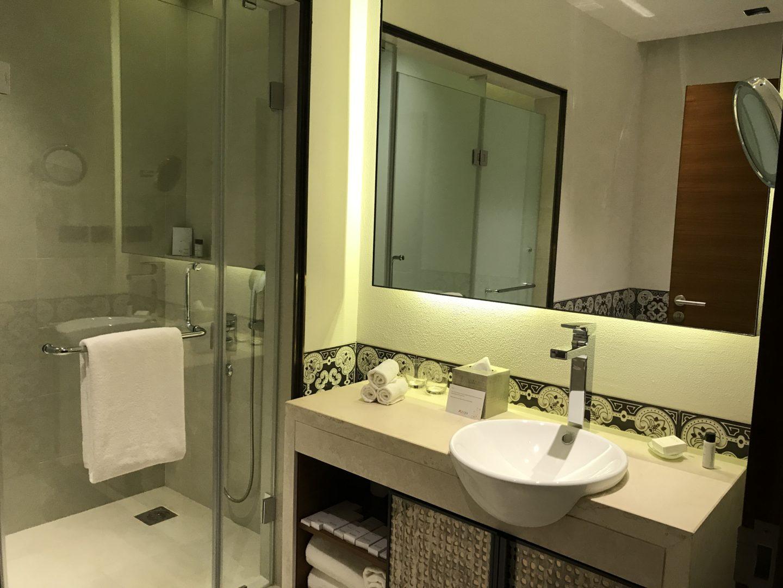 azaya washroom