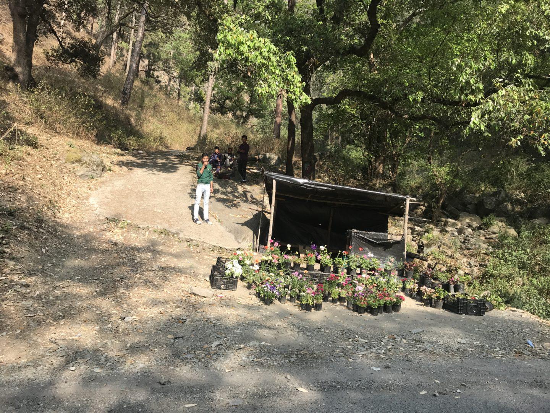 nantin camp location