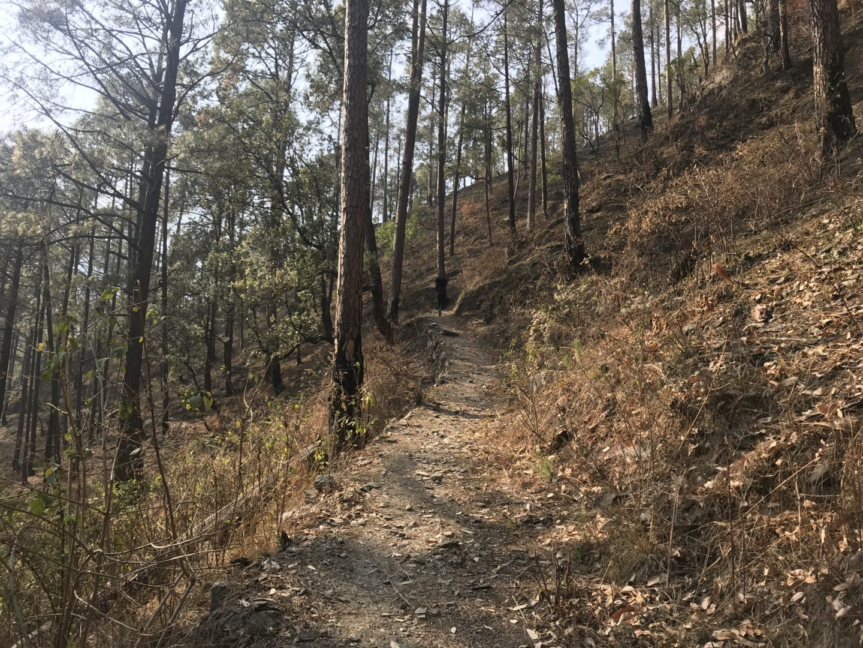 nantin camp walk