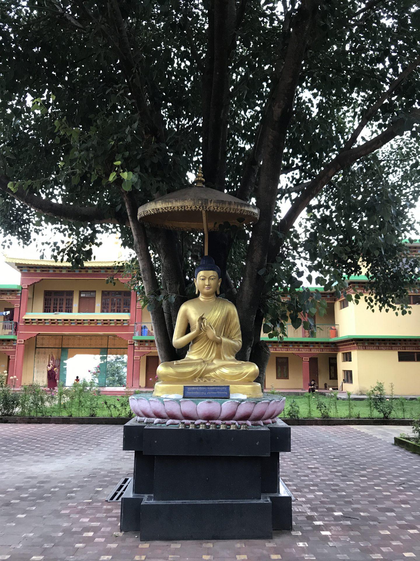 bir chokling monastery