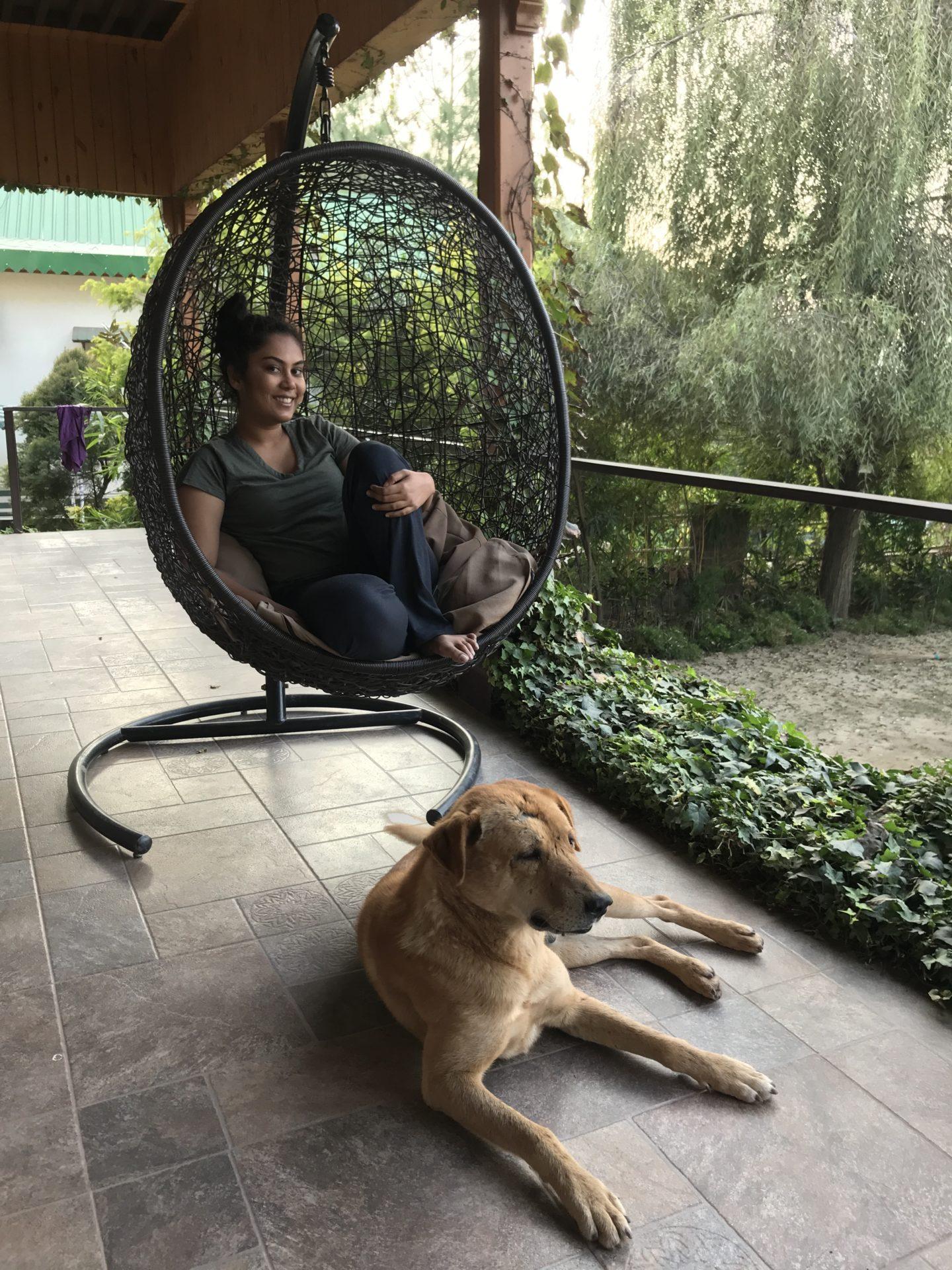 best indian travel blogger himachal pradesh