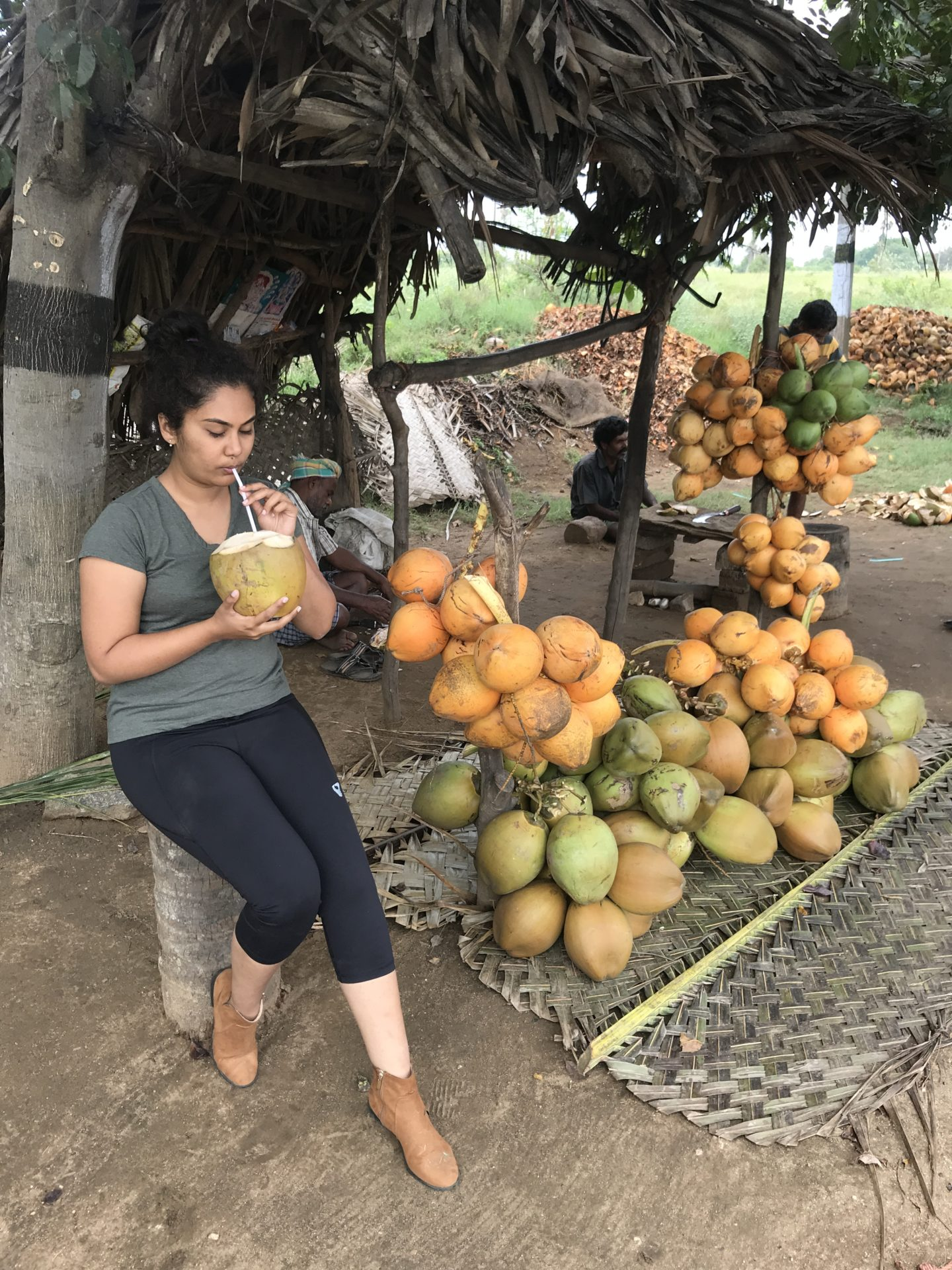 pollachi coconut thatgoangirl travel blog