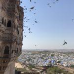 things to do in jodhpur